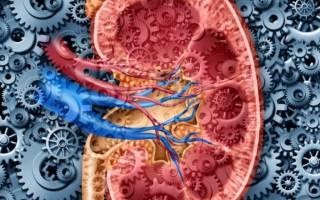 Почечная гипертония лечение таблетки