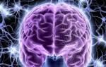 Очаговая сосудистая энцефалопатия головного мозга