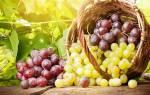 Виноград и давление артериальное давление