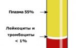 Гемоглобин понижен соэ повышен причины