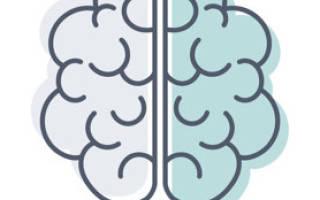 Препараты для улучшения памяти у детей школьного возраста